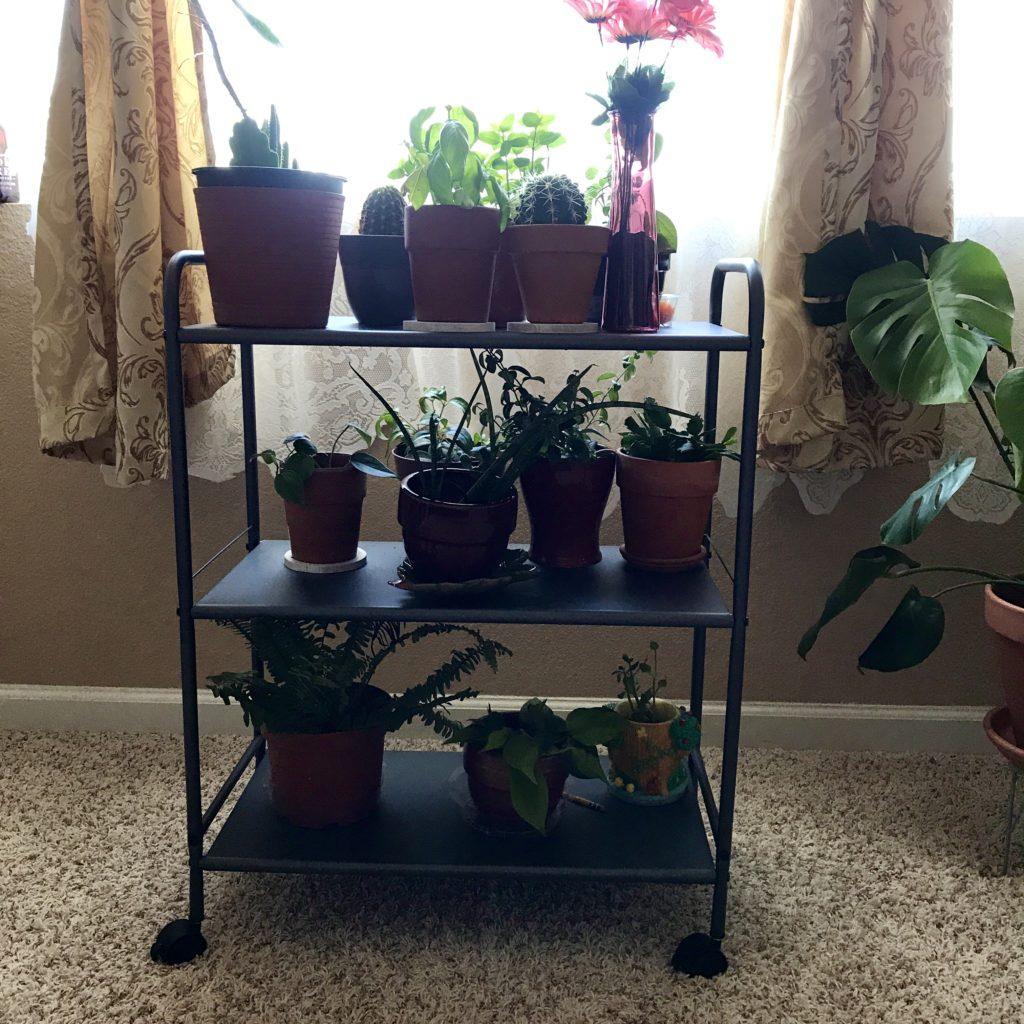 Plant shelving cart